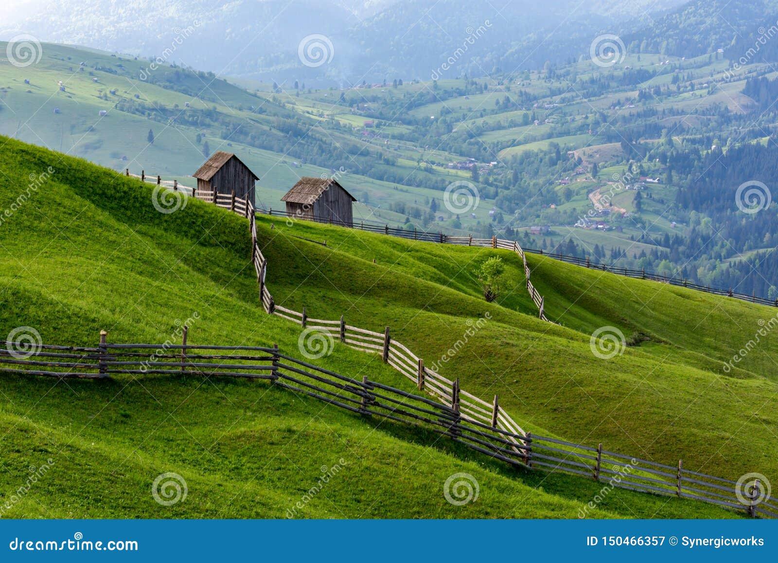 Landschap van een ruwe groene weide met belangrijke lijnen tot schuren, Bucovina, Roemenië