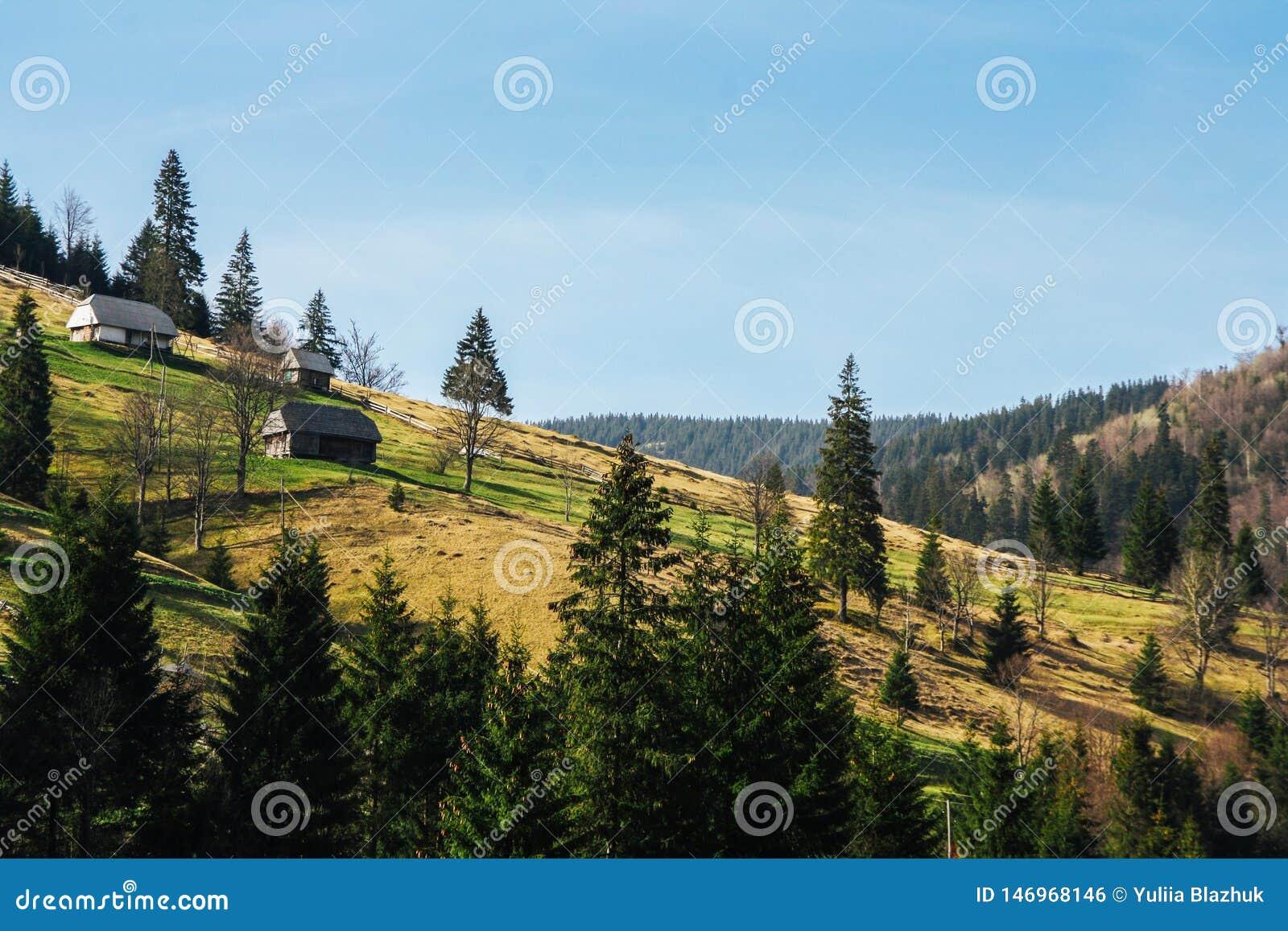 Landschap van groene die bergheuvels door bos met plattelandshuisjes worden behandeld