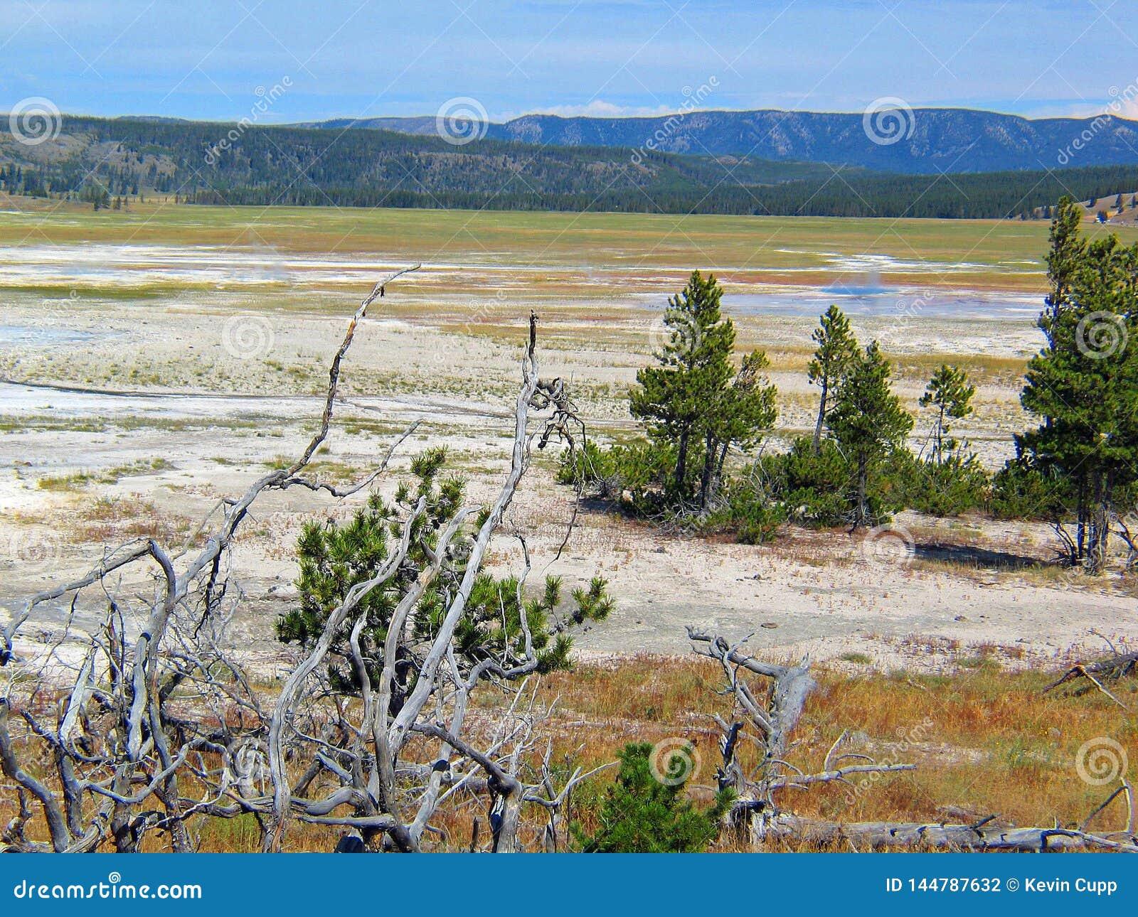 Landschap van het de Geiserbassin van het Yellowstonepark het geothermische