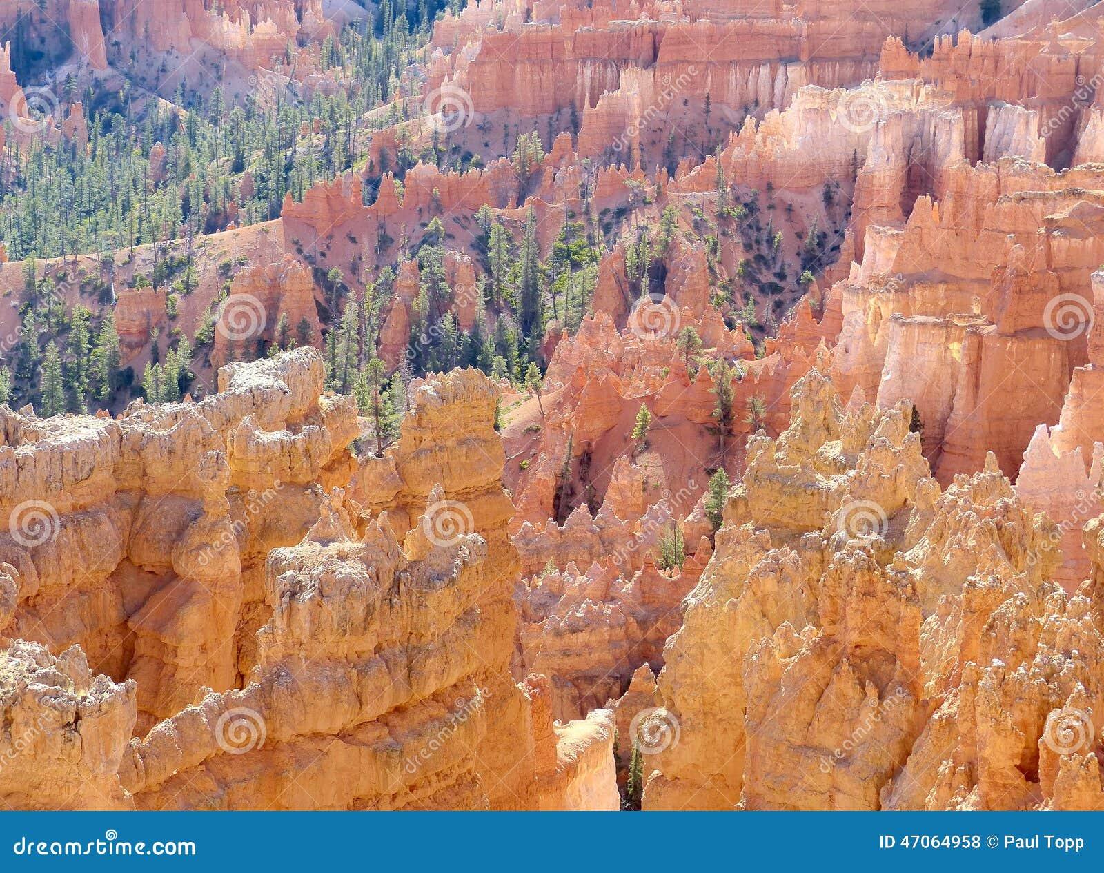 Landschap van het Park van de Canion van Bryce het Nationale