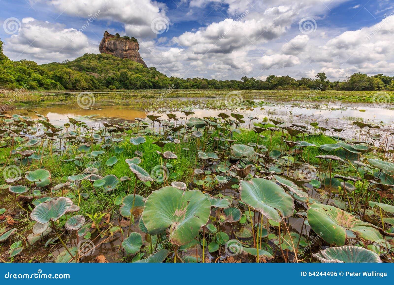 Landschap van leeuwrots en meer in Sigiriya, Sri Lanka