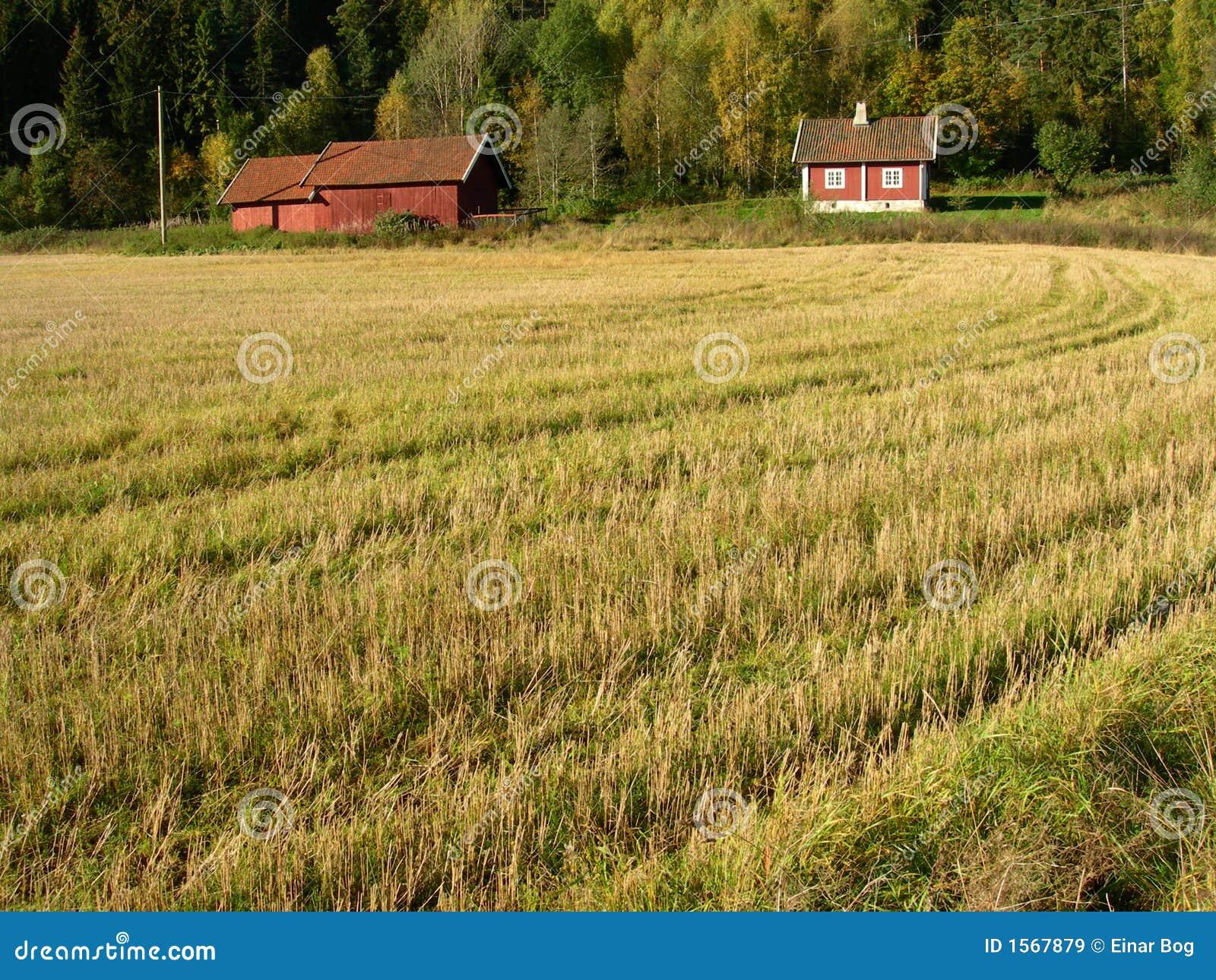 Landschap van Noorwegen.