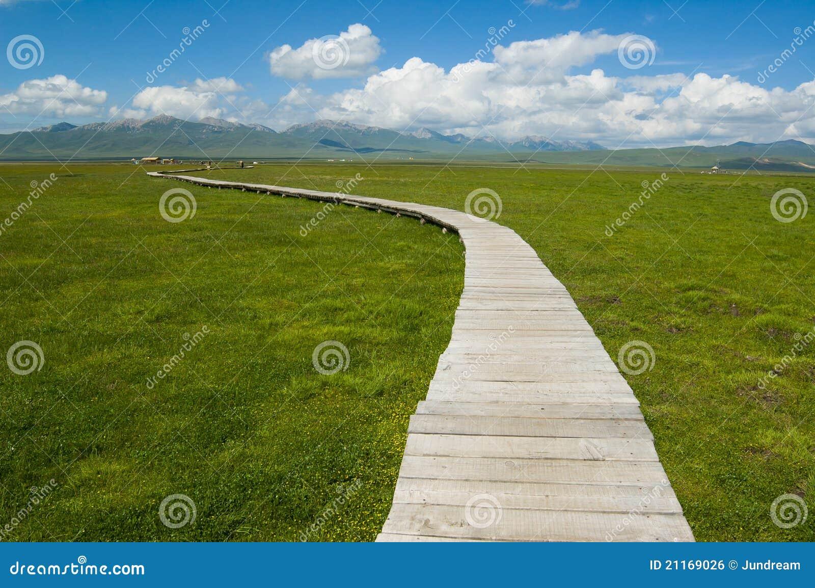 Landschap van weide bij tibetan plateau stock foto afbeelding 21169026 - Aperitief plateau huis van de wereld ...