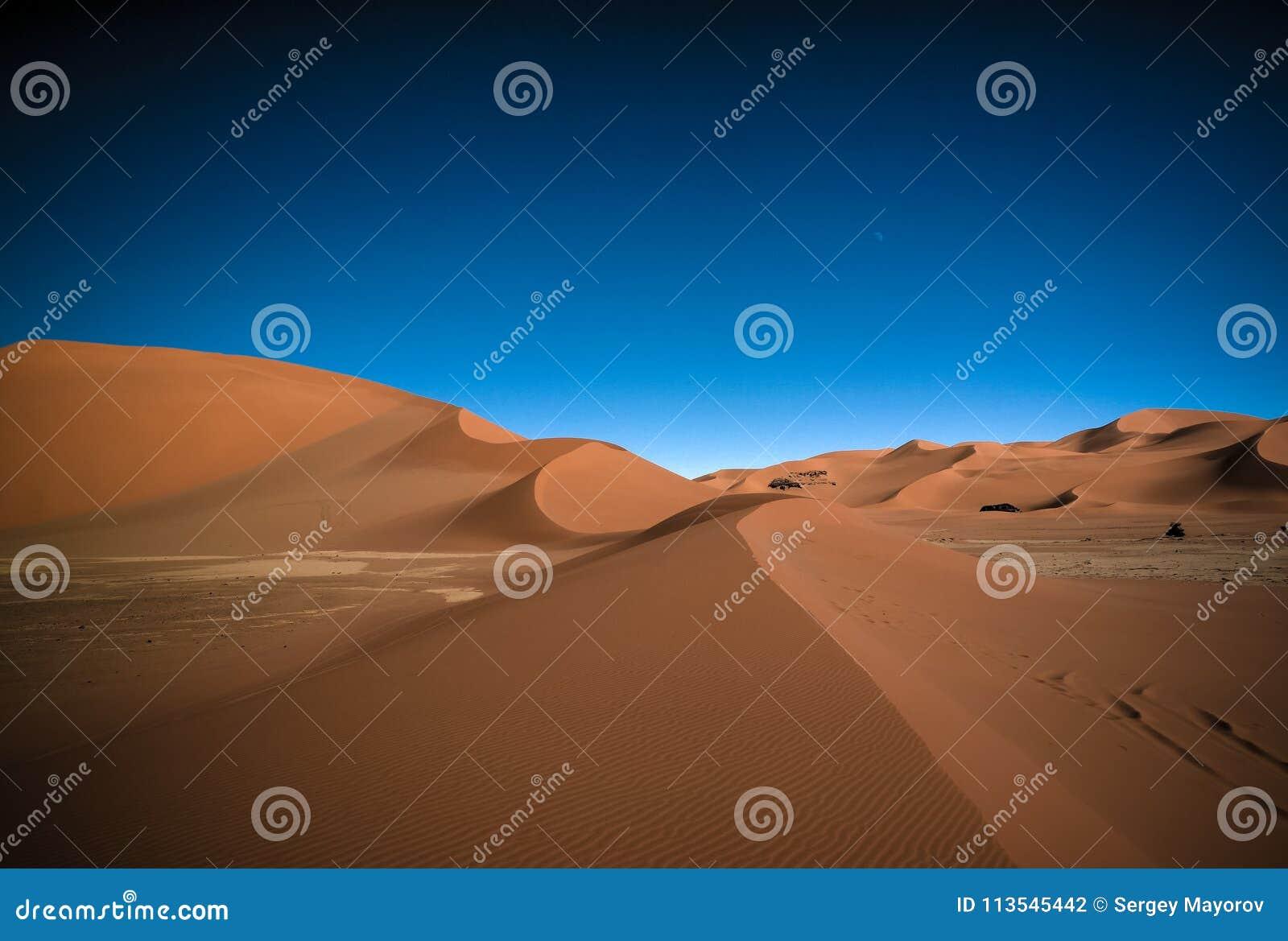Landschap van zandduin en het beeldhouwwerk van de zandsteenaard in Tamezguida in het nationale park van Tassili nAjjer, Algerije