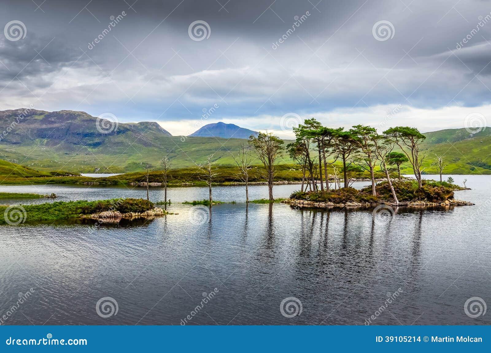 Landschapsmening van bomen in een meer, Schotland