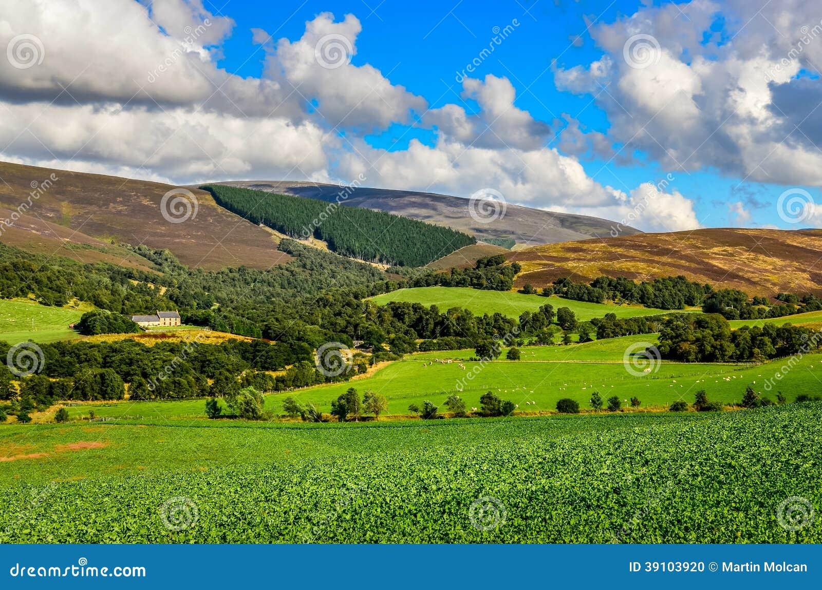 Landschapsmening van Schotse hooglandenweiden