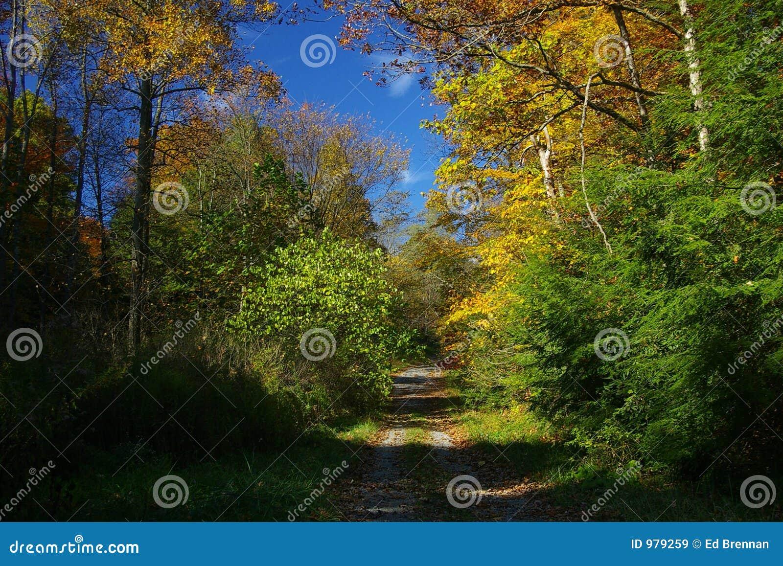 Landsfallväg