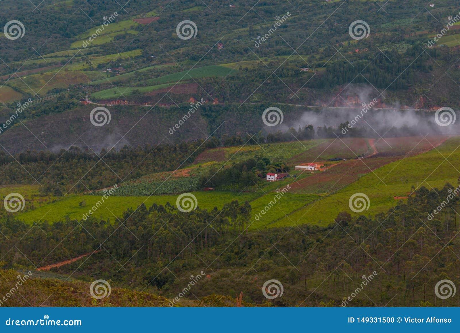Landskap av bergen av Colombia