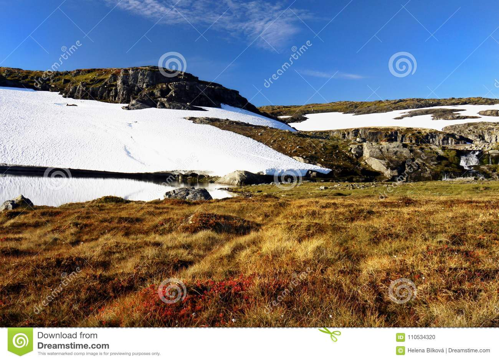 Landskap för berg för äng för snöfält