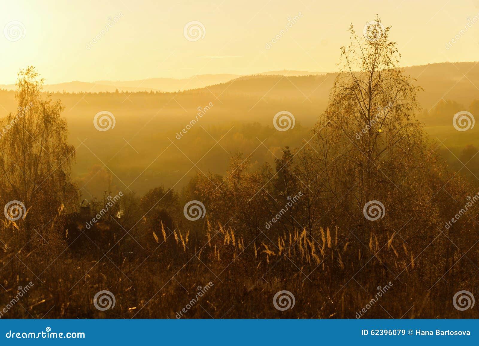 Landskap i solnedgång