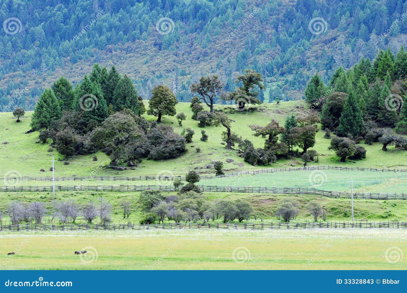 Landskap i Tibet