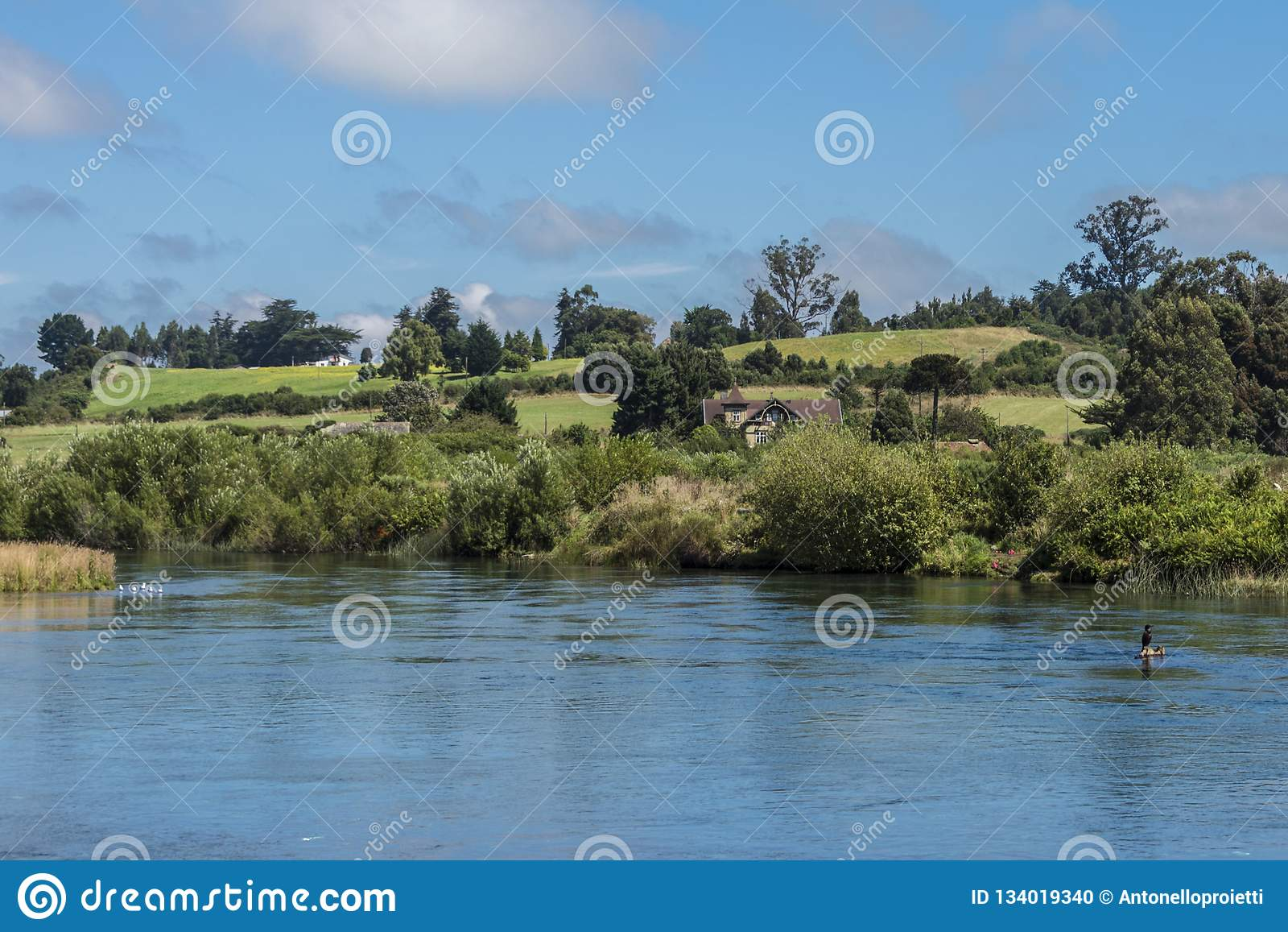 Landskap med ängar och floden i sydliga Chile