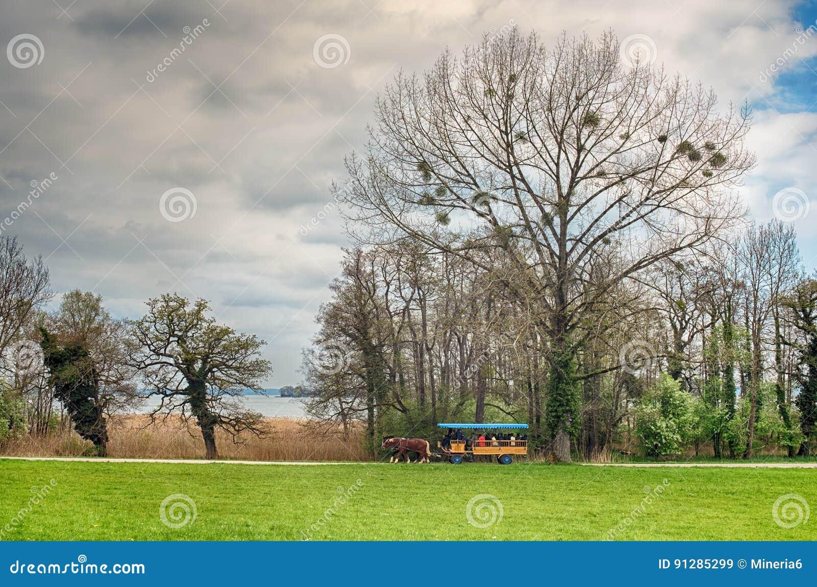 Landskap med en vagn