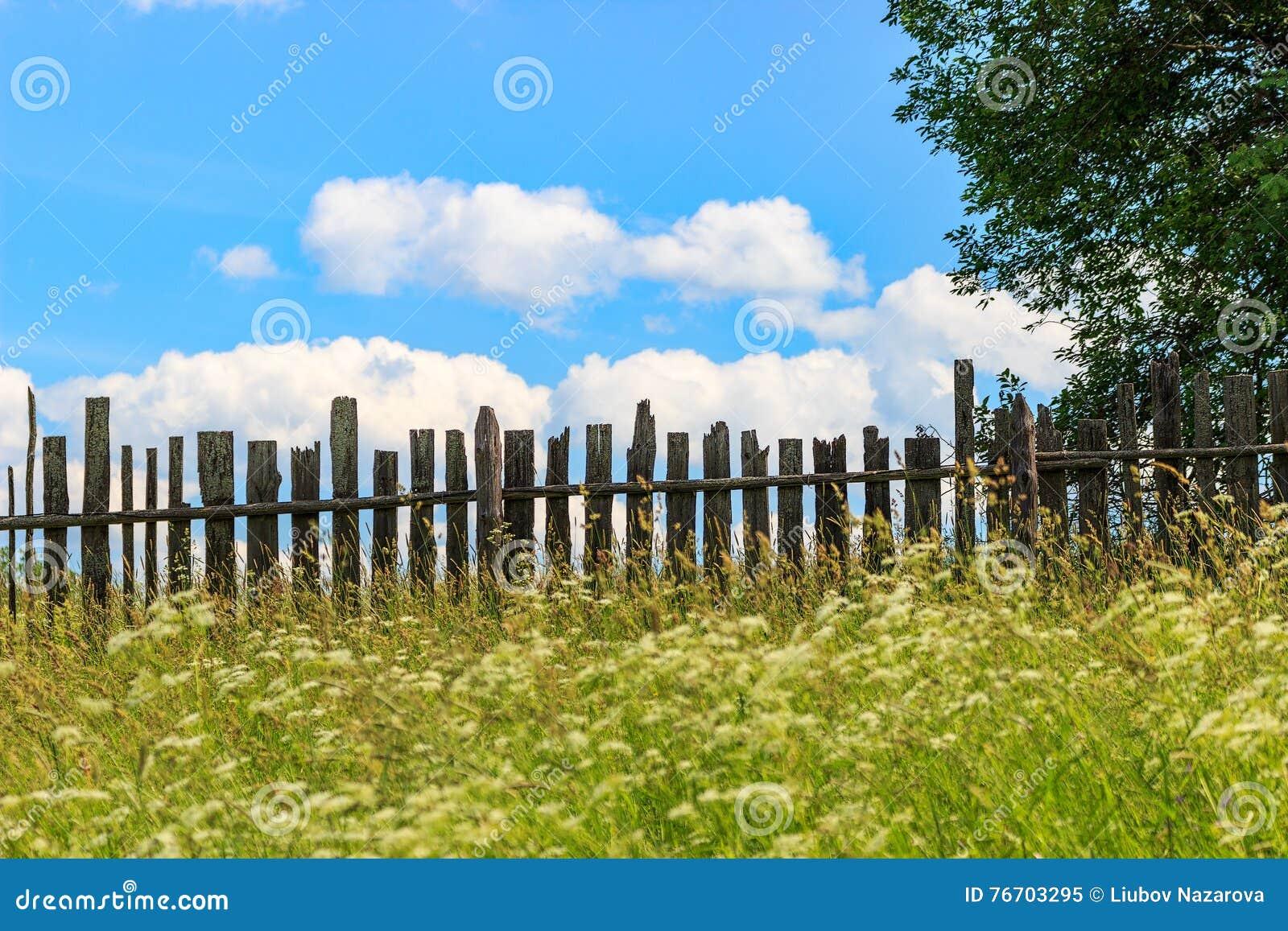 Landskap med ett gammalt staket