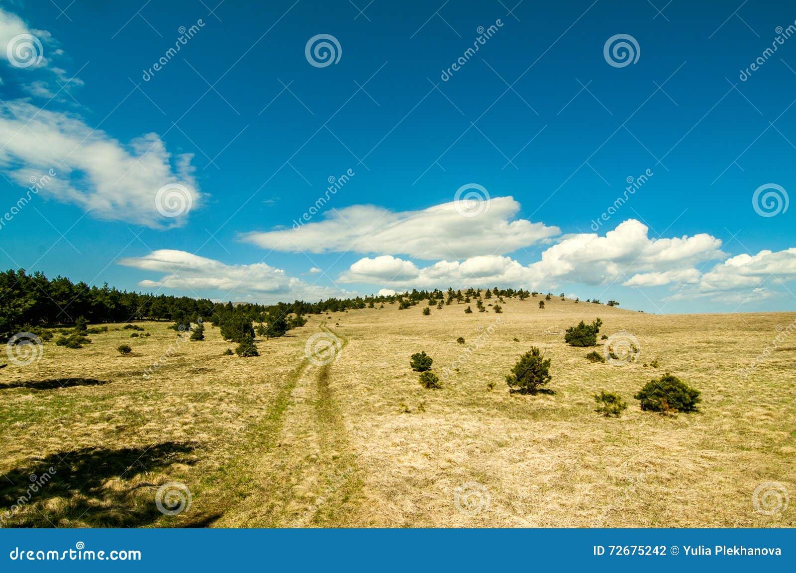 Landskap med horisonten