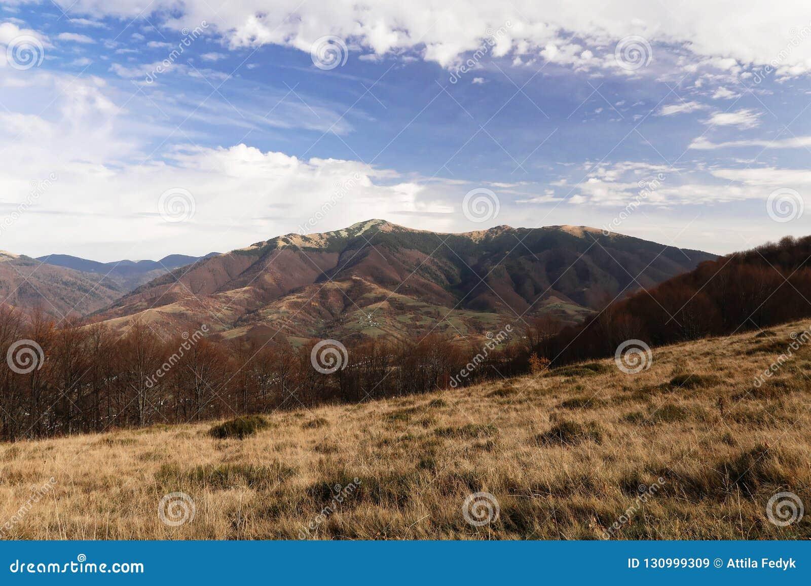 Landskap med sikter av bergen Runt om l 'Est-gräs