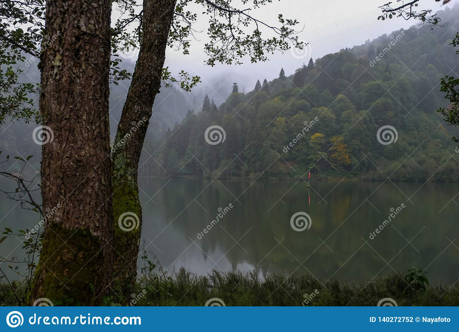 Landskap med sjön och den dimmiga skogen i berg