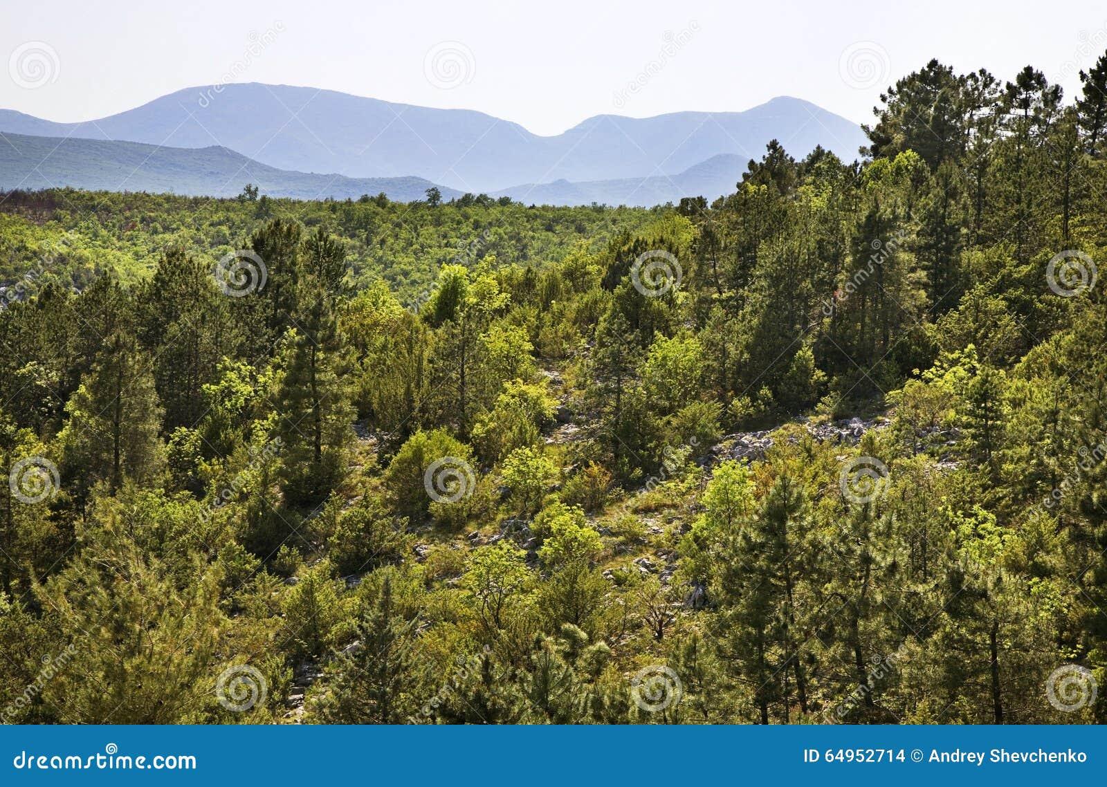 Landskap nära Studenci stämma överens områdesområden som Bosnien gemet färgade greyed herzegovina inkluderar viktigt, planera ut