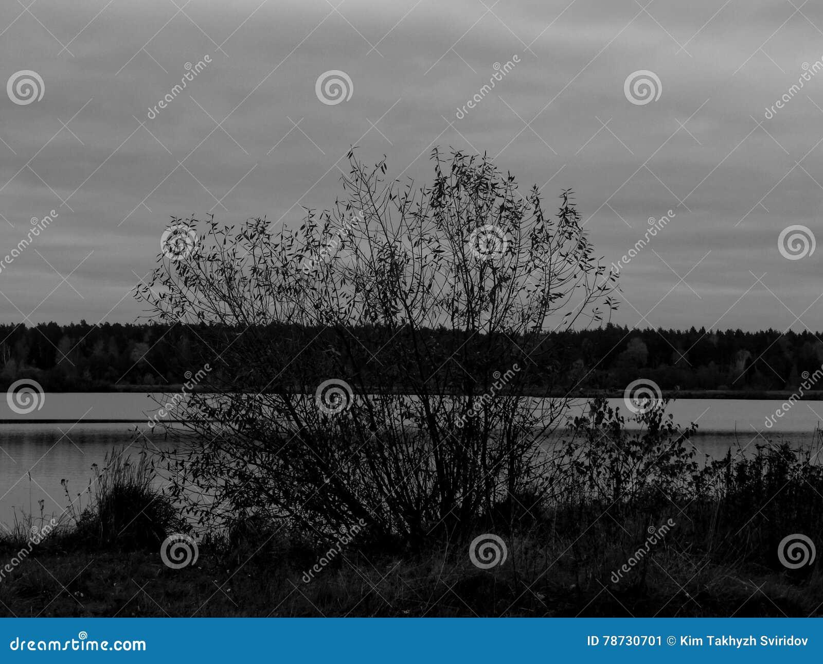 Landskap på en sjö i den svartvita bilden
