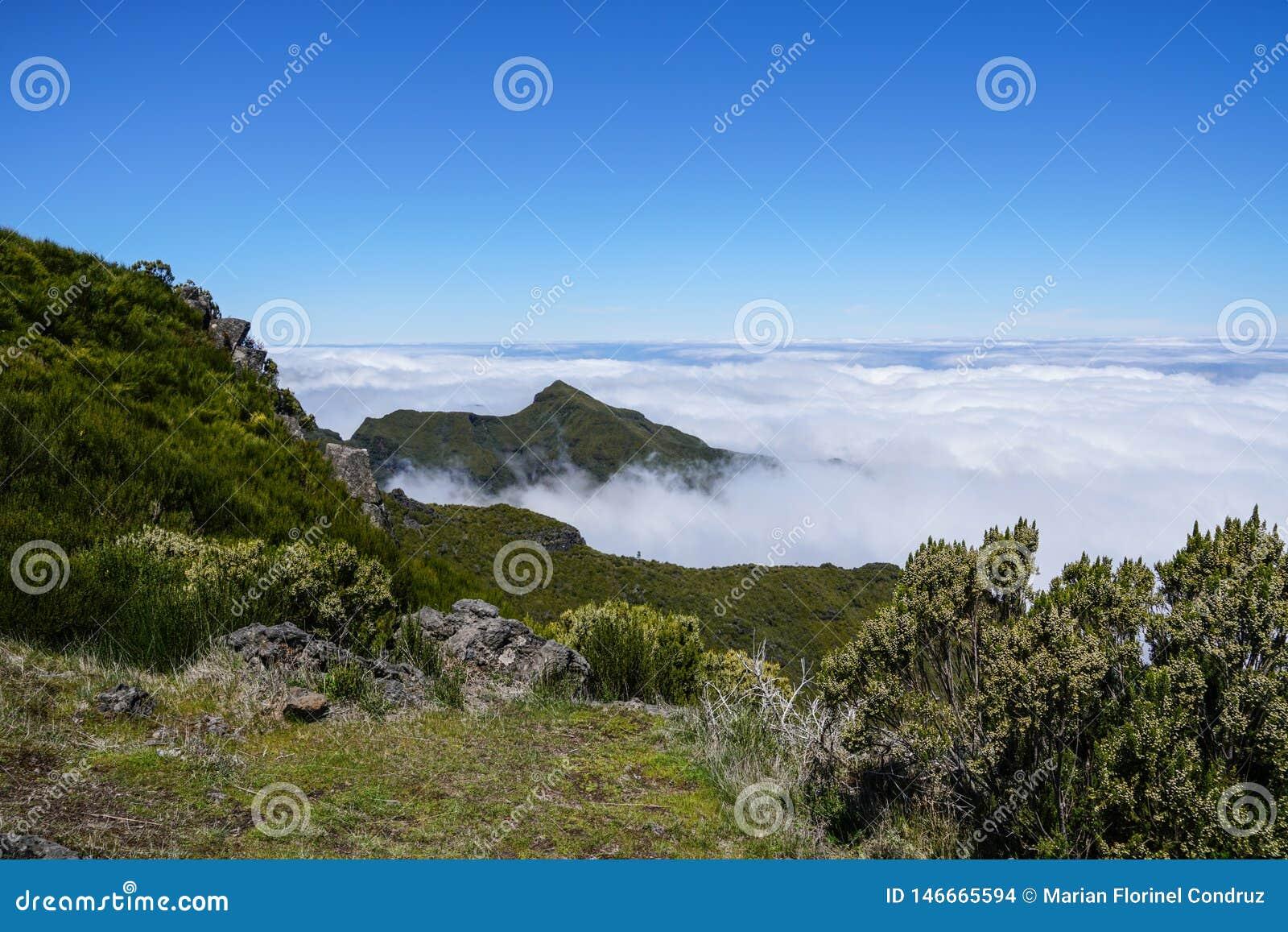 Landskap p? Pico de Ruivo i madeira