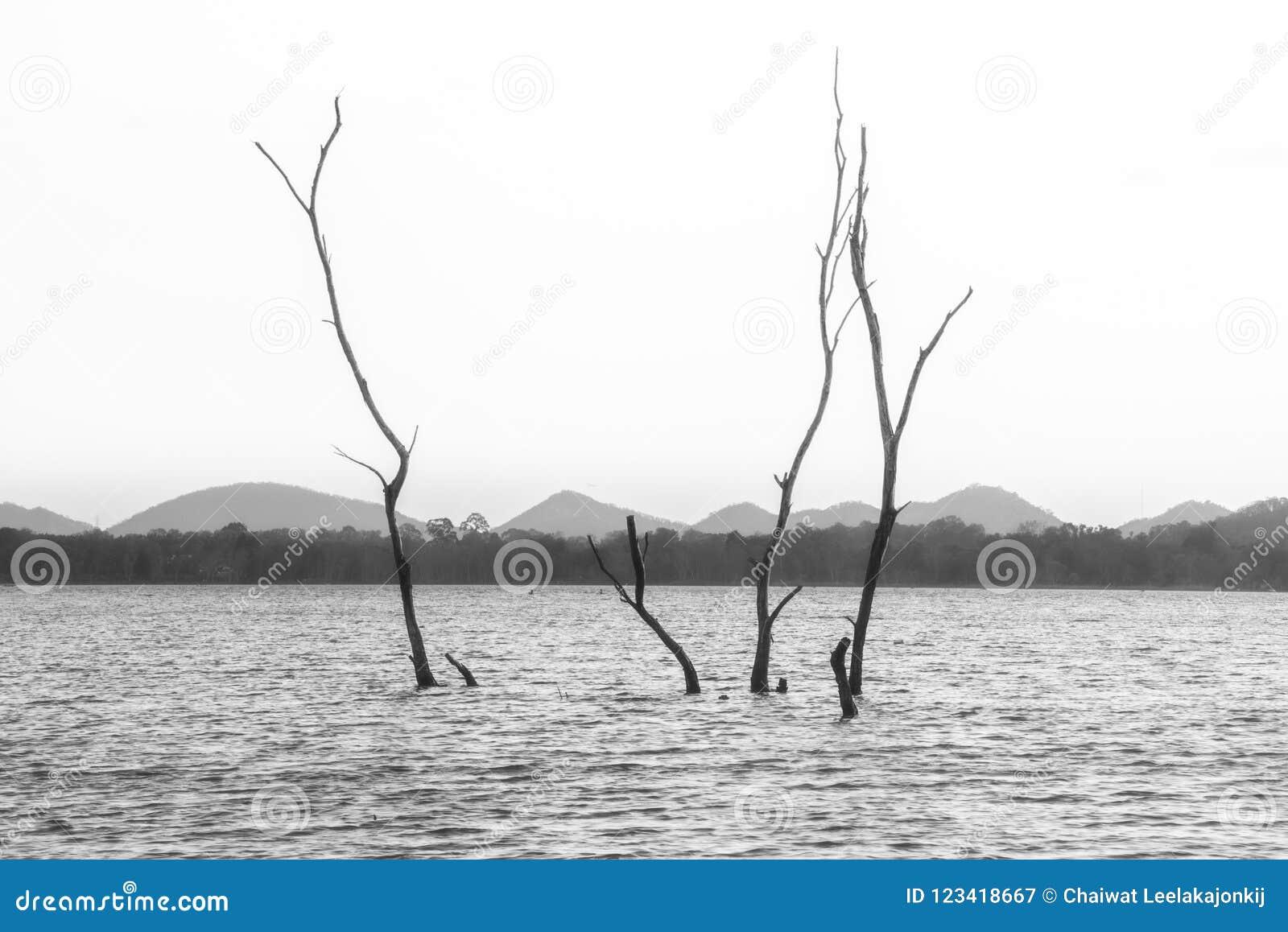 Landskap sjö i Thailand