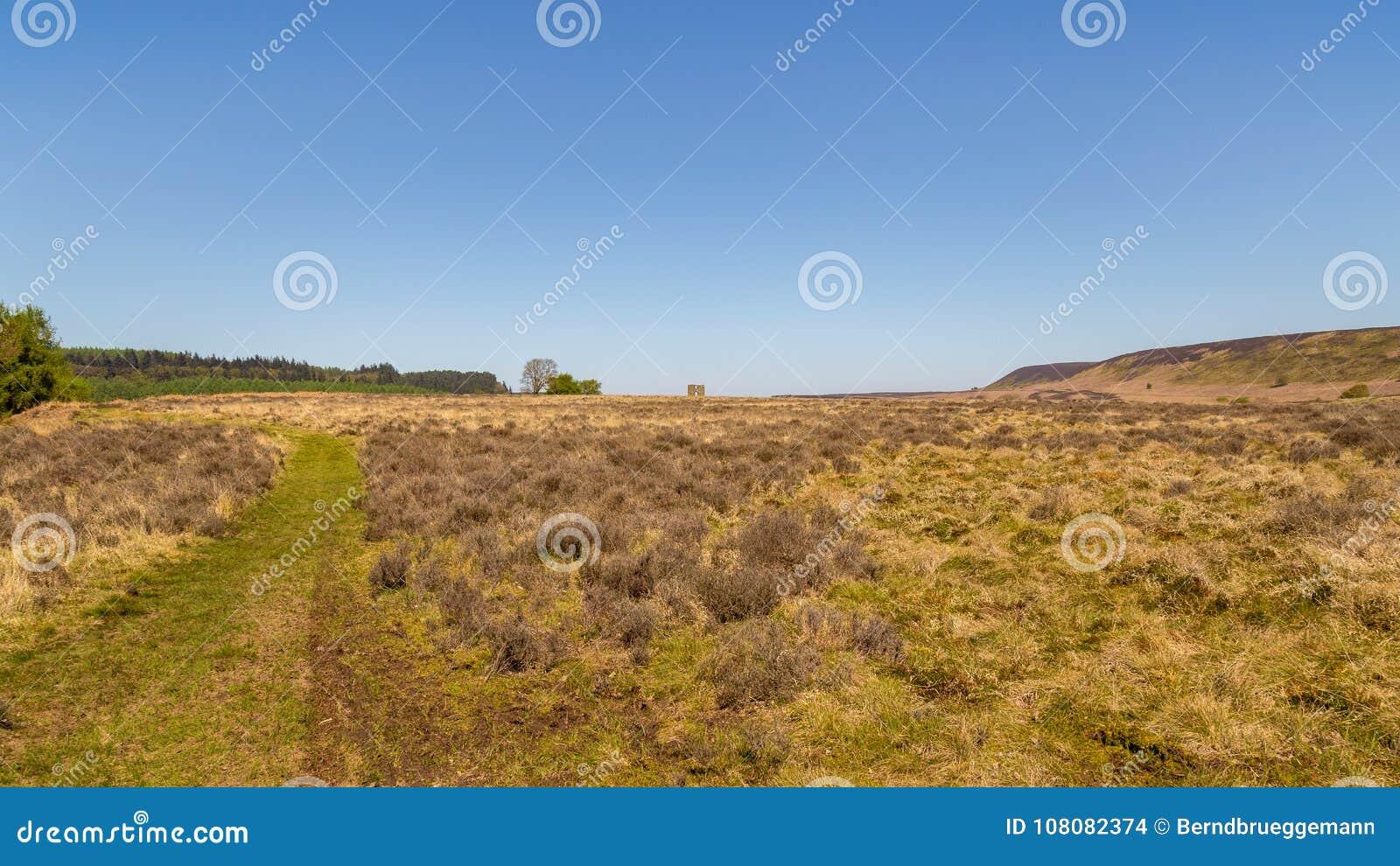 Landskapet i den norr Yorken förtöjer nationalparken, UK