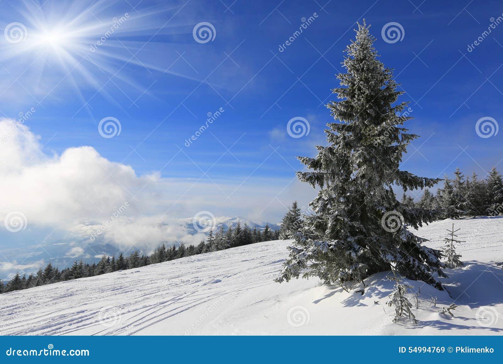 Landskapet med sörjer i berg