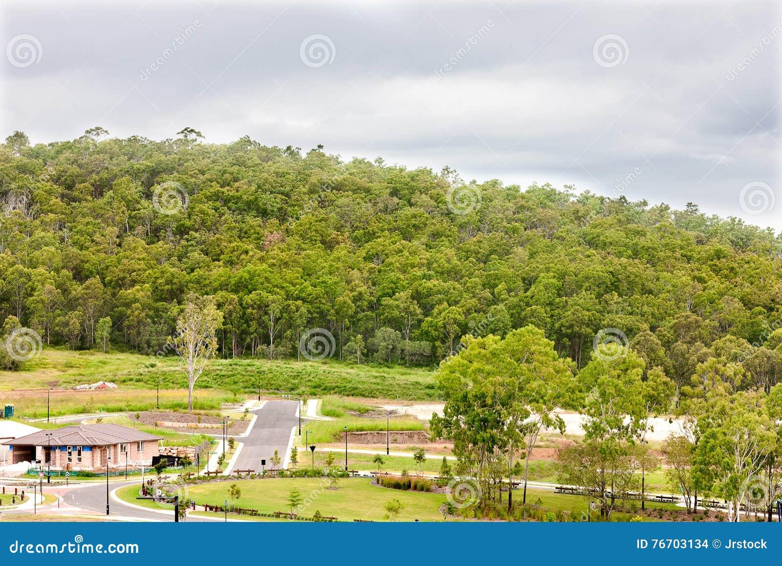 Landskapslutsikt av ett berg med en grön skog nära till t