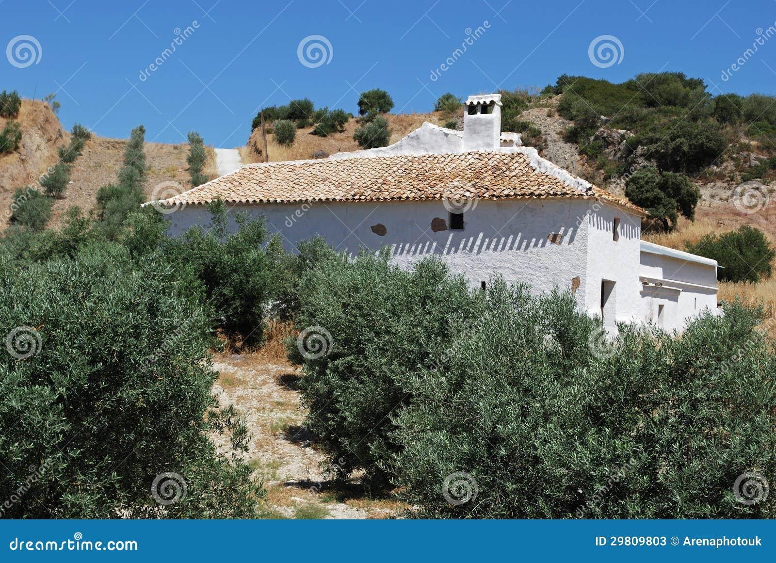 Lantbrukarhem- och olivdunge, Olvera, Spanien.
