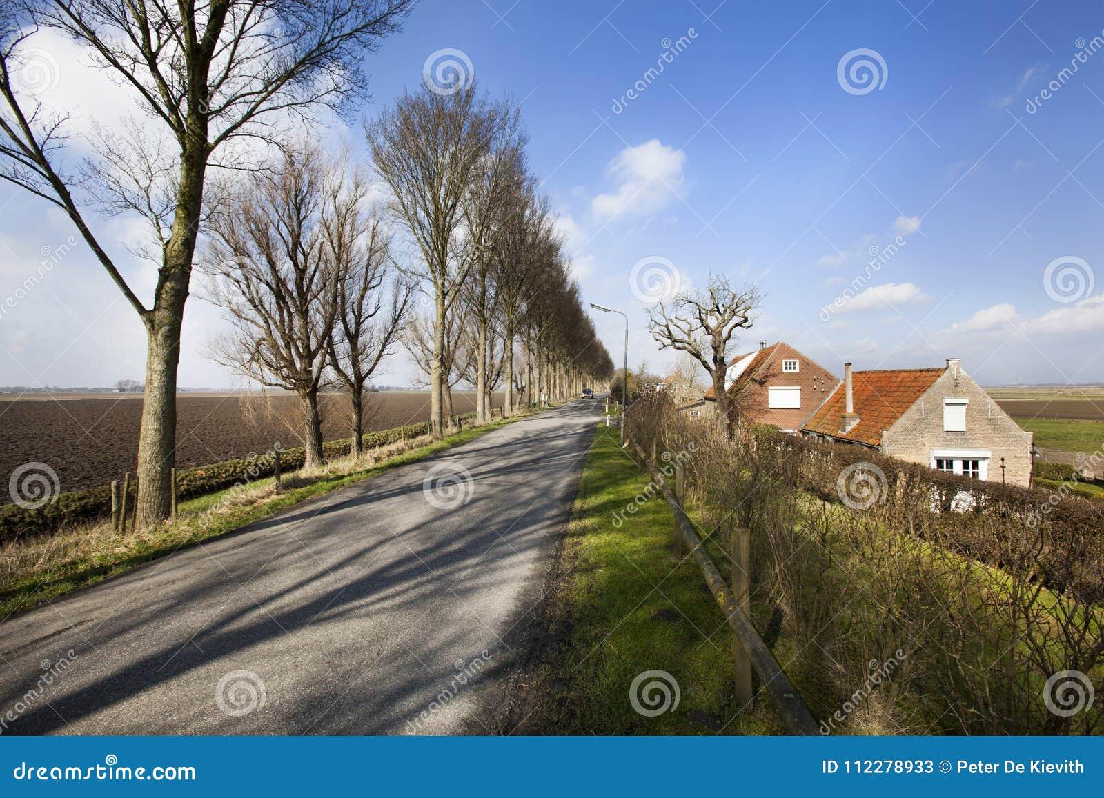Landsväg på ett dike i holländskt polderlandskap