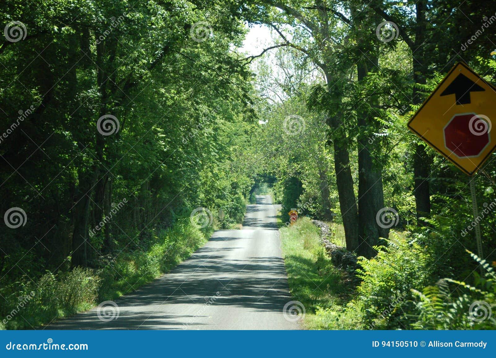 Landweg - Blauwe Ridge Appalachia - Boyce, Virginia