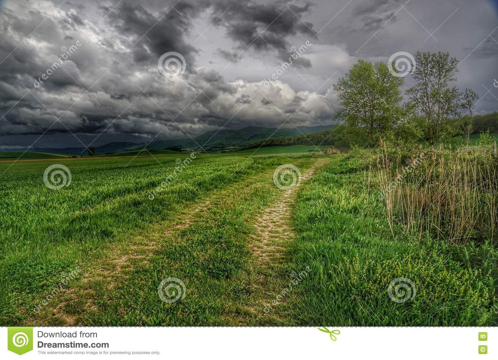 Landweg op storymdag