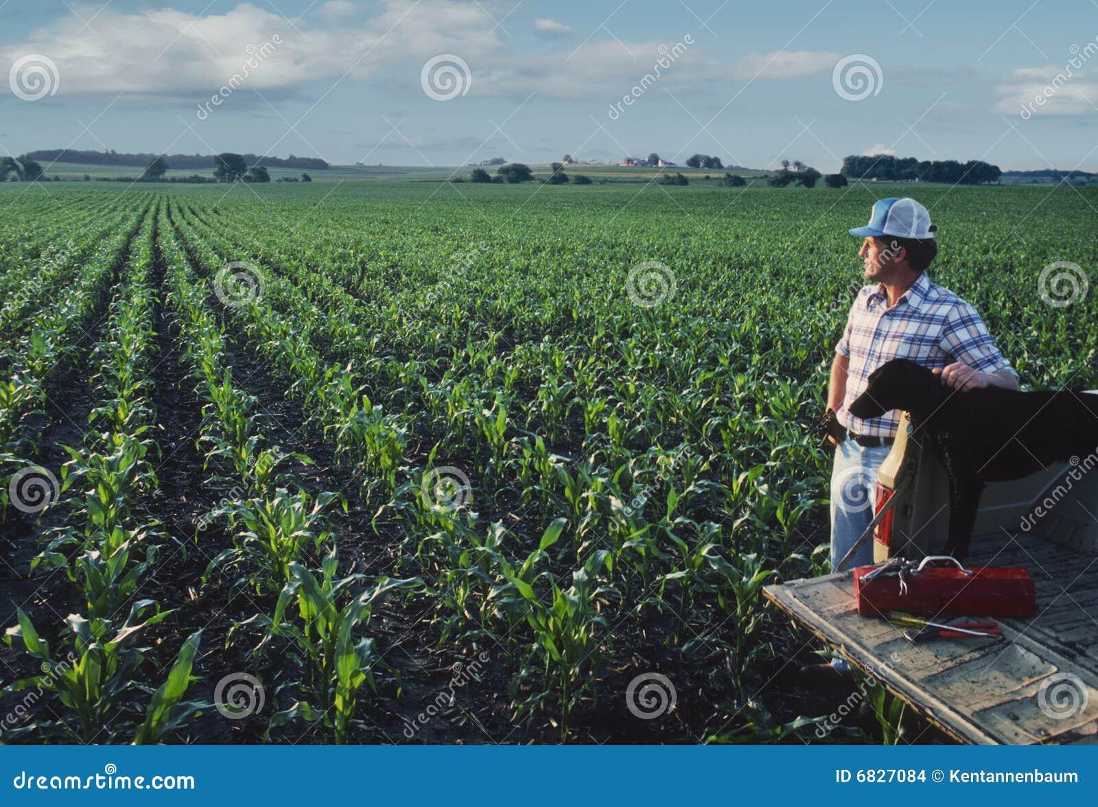Landwirt mit Hund am Getreidefeld