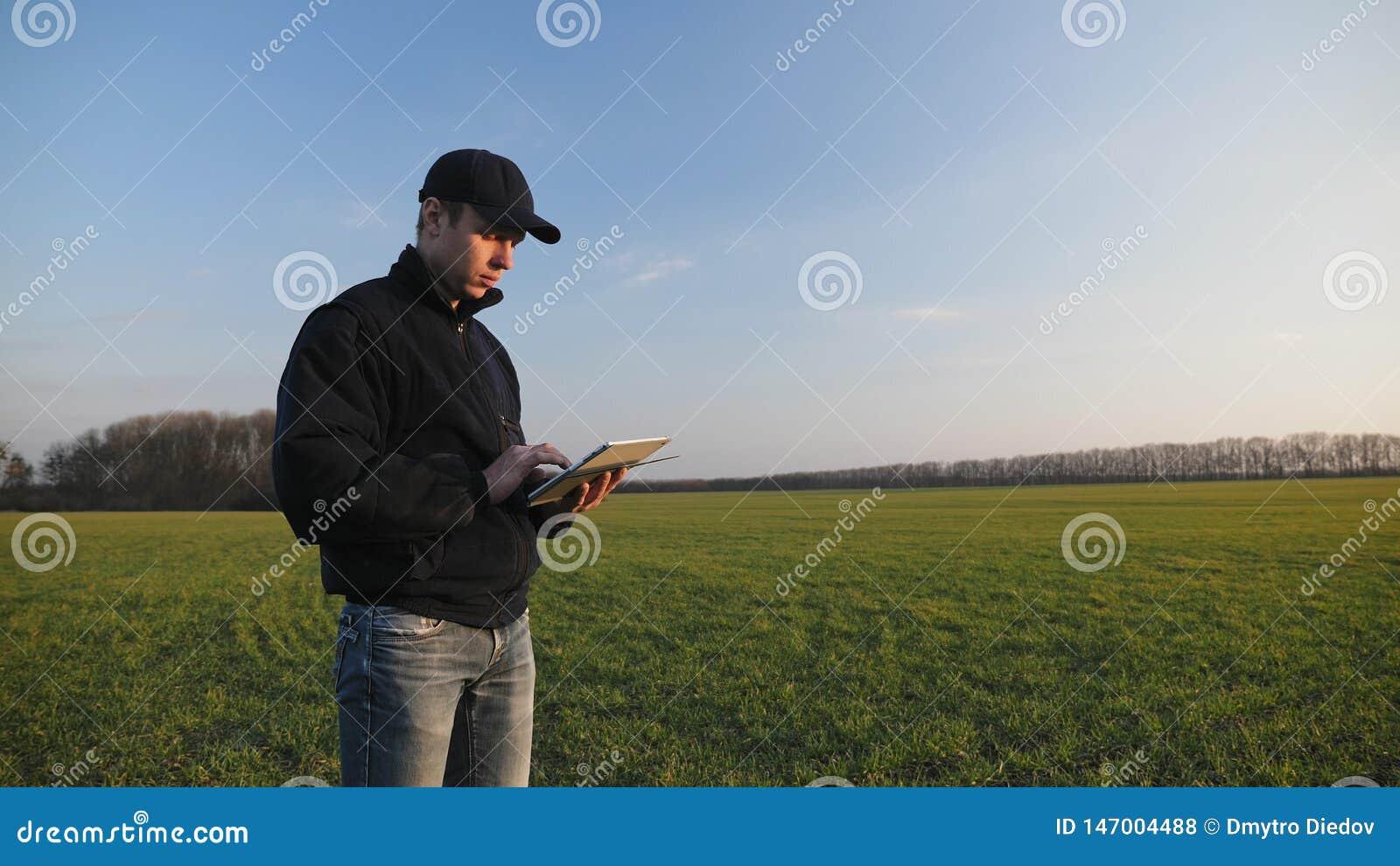 Landwirt mit tragbarem Tablet-Computer auf einem Weizengebiet