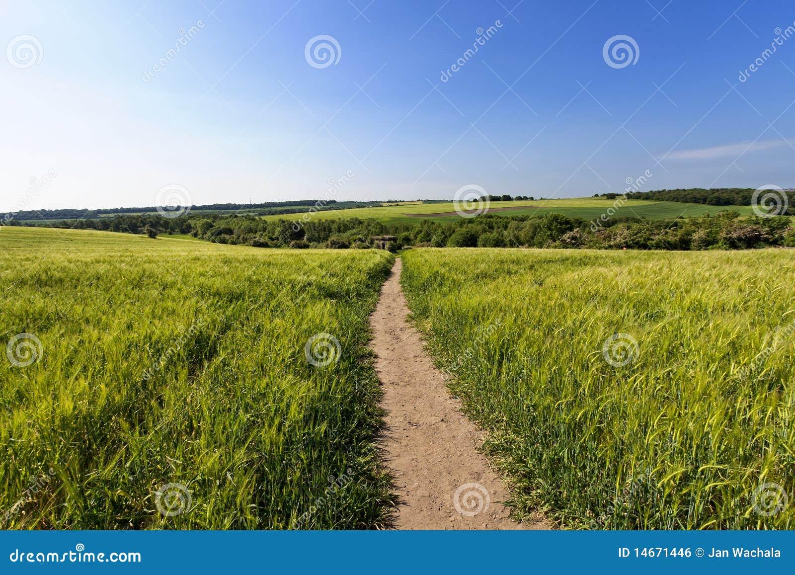 Landwirtschaft mit allgemeinem Pfad