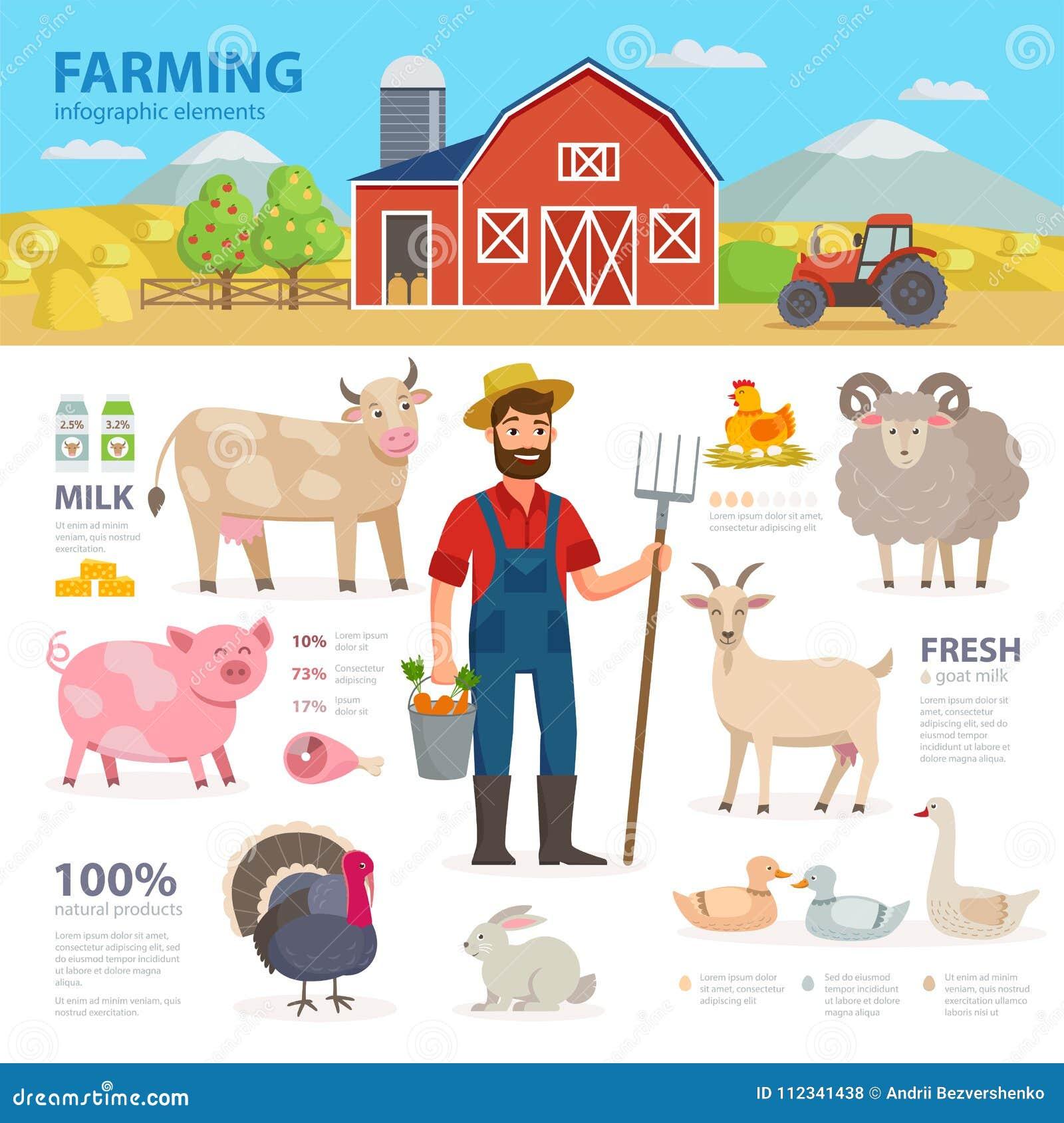 Landwirtschaft Von Infographic Elementen Landwirt, Vieh, Ausrüstung ...