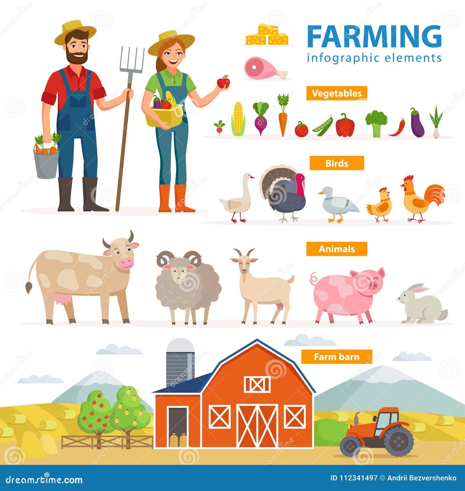 Landwirtschaft Von Infographic Elementen Zwei Landwirte - Mann Und ...