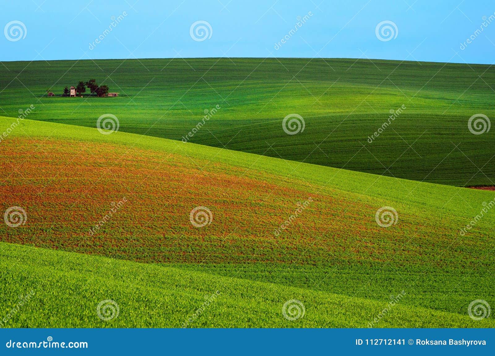 Landwirtschaftliche Frühlingslandschaft