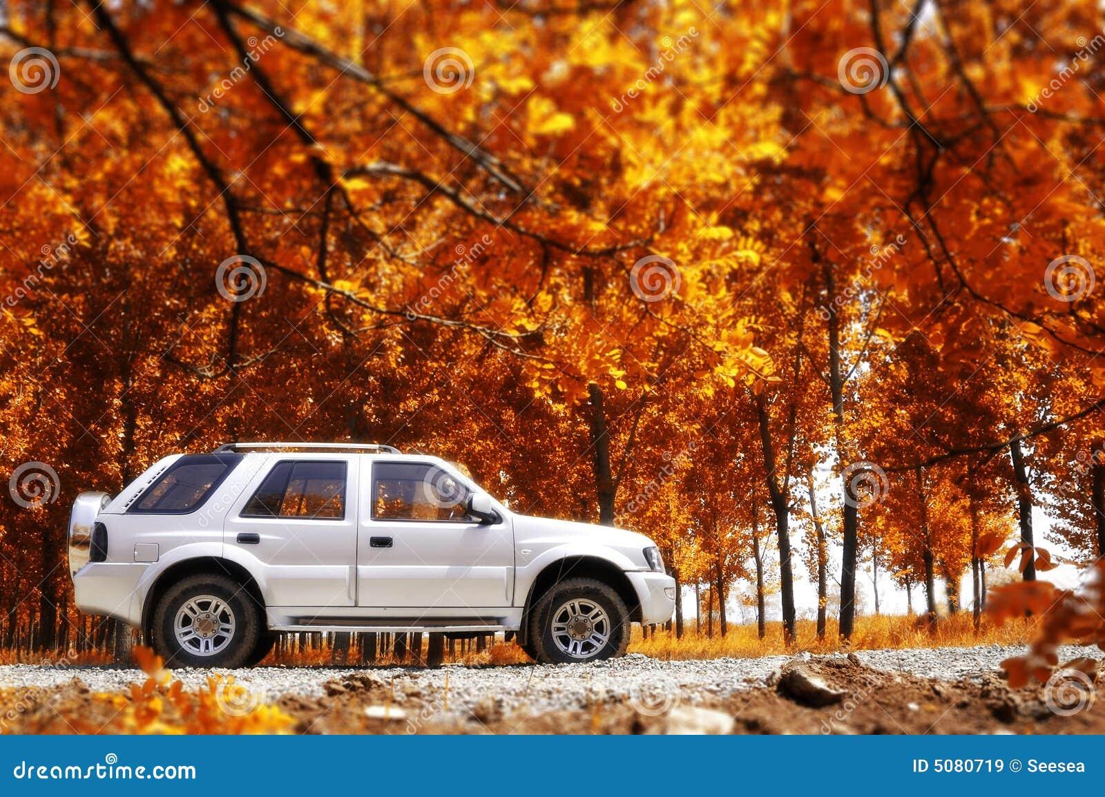 Landwirtschaftliche Reise im Herbst