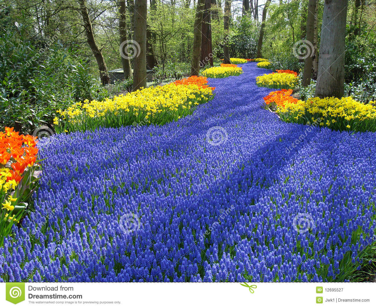 Lane Of Flowers In Dutch Spring Garden Stock Image Image Of
