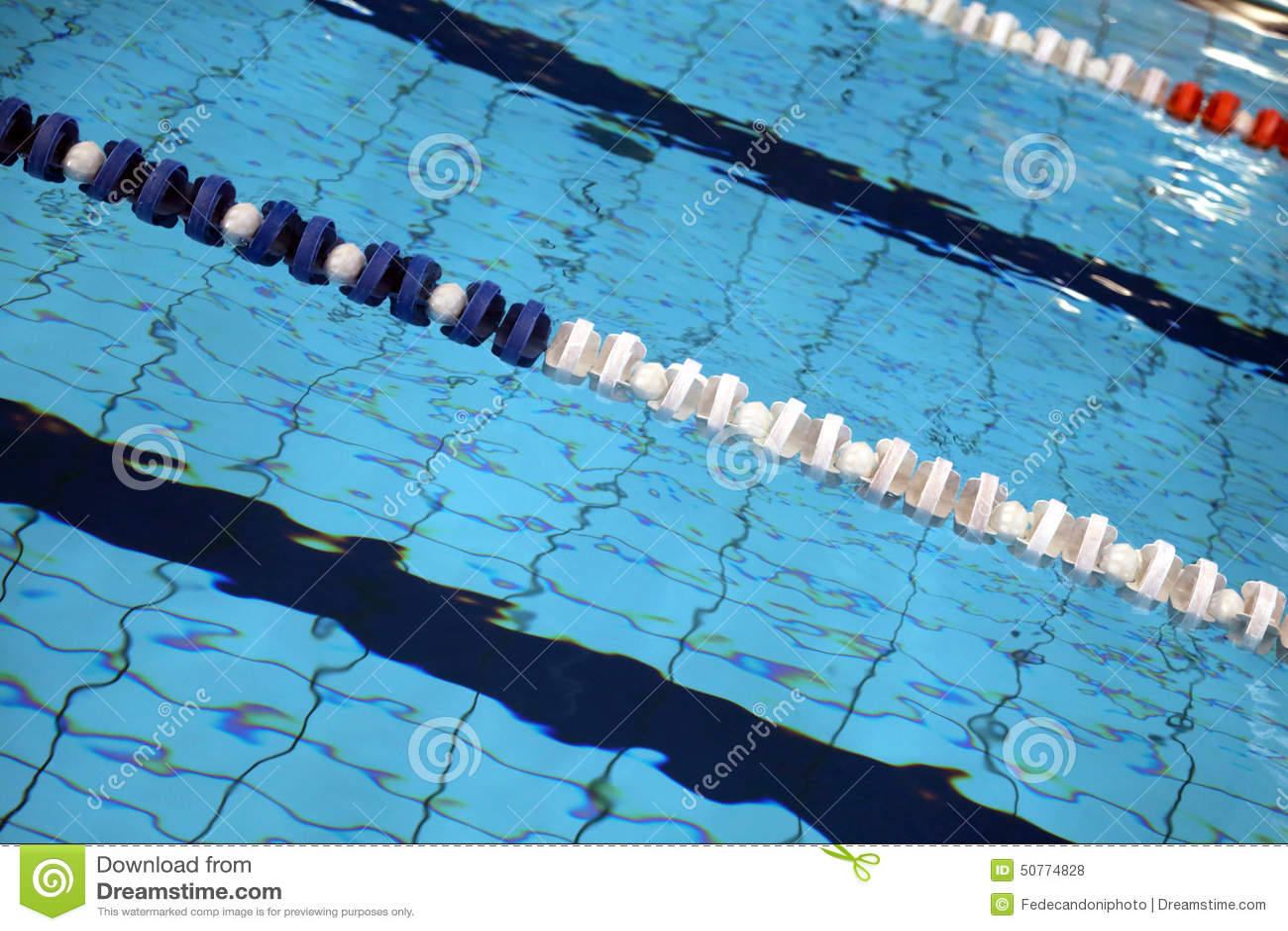 Indoor olympic swimming pool 20 Feet Tall Lane Swimming Races In The Olympic Indoor Swimming Pool Withhout People Liberty University Lane Swimming Races In The Swimming Pool Stock Photo Image Of Lane