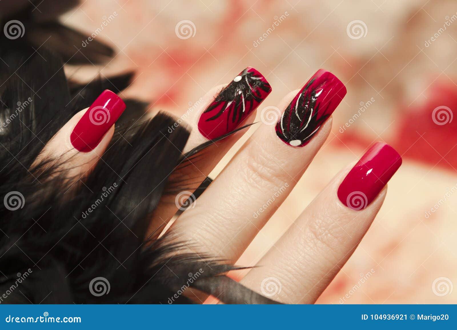 Spacious Fingernägel Design Bilder Reference Of Lange Rote Nägel Mit Von Schwarzen Federn