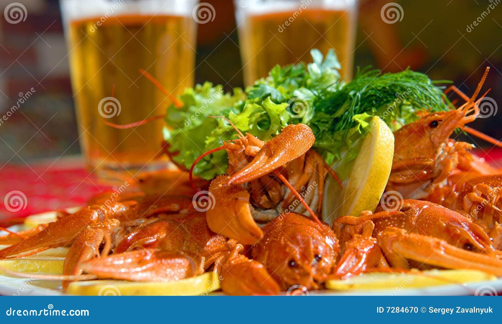 Langostas del río contra la cerveza