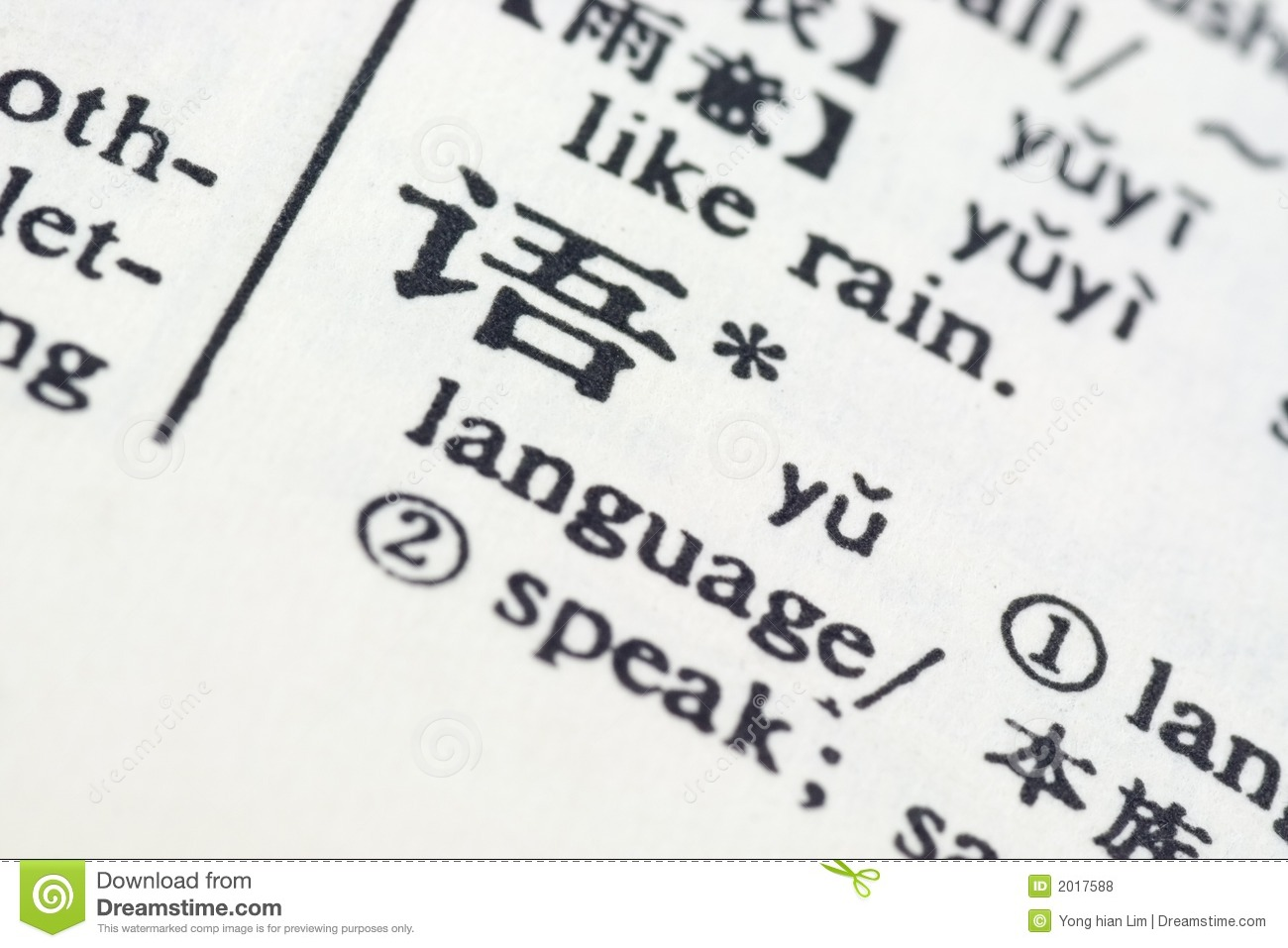 ricardo in chinese writing and meanings