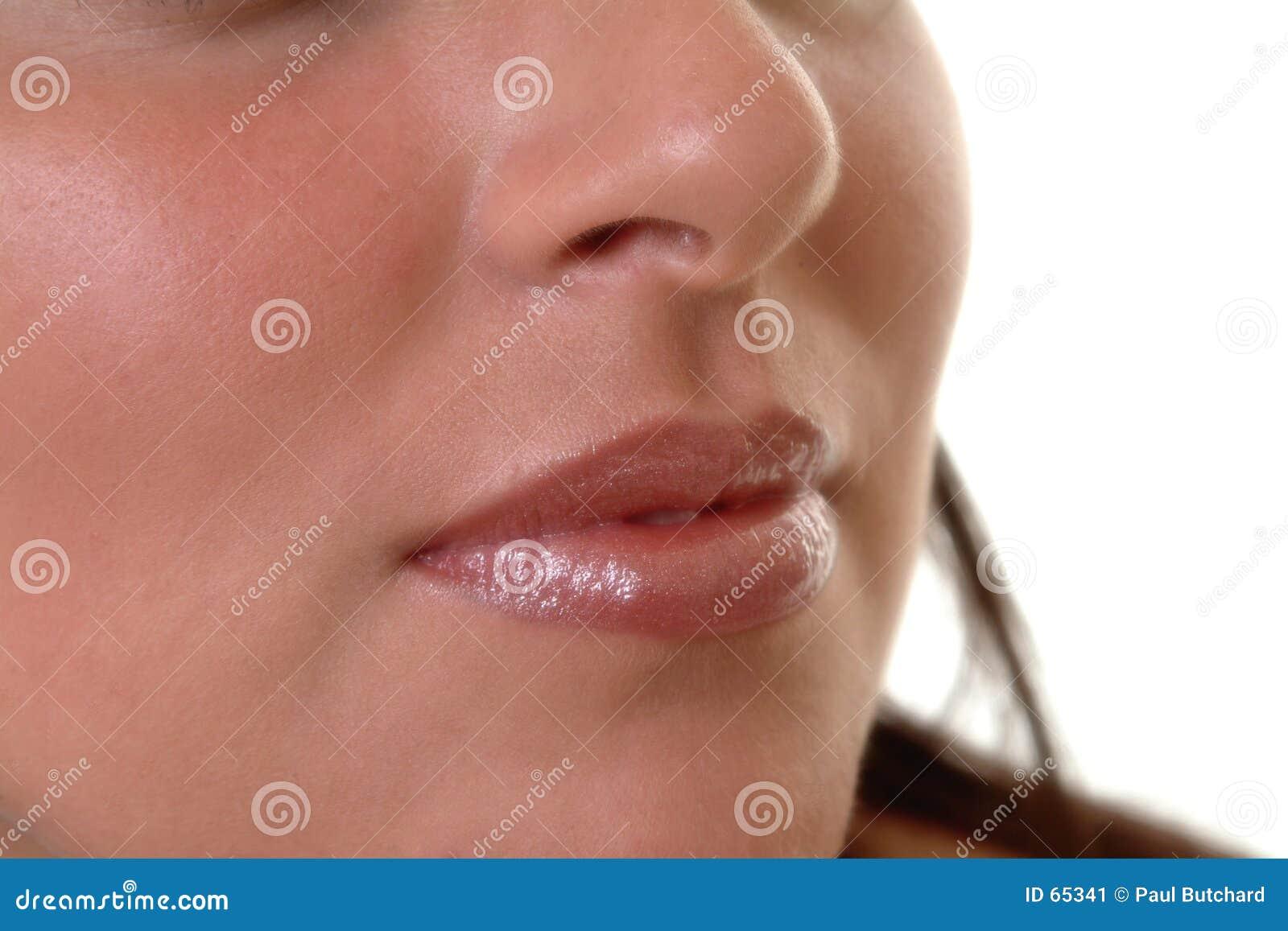 Download Languettes image stock. Image du fond, bouche, rouge, soin - 65341
