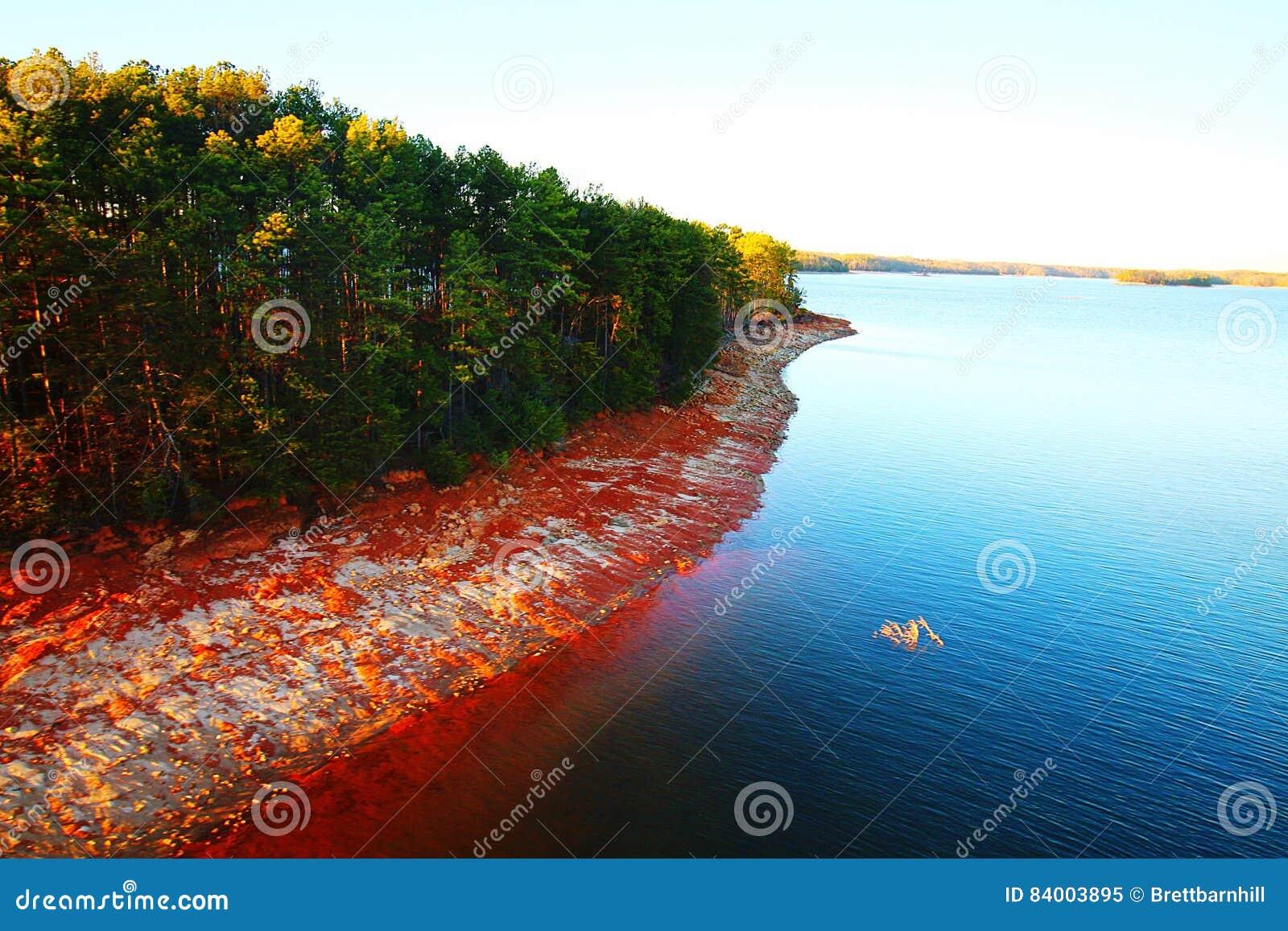 Lanier Shoreline