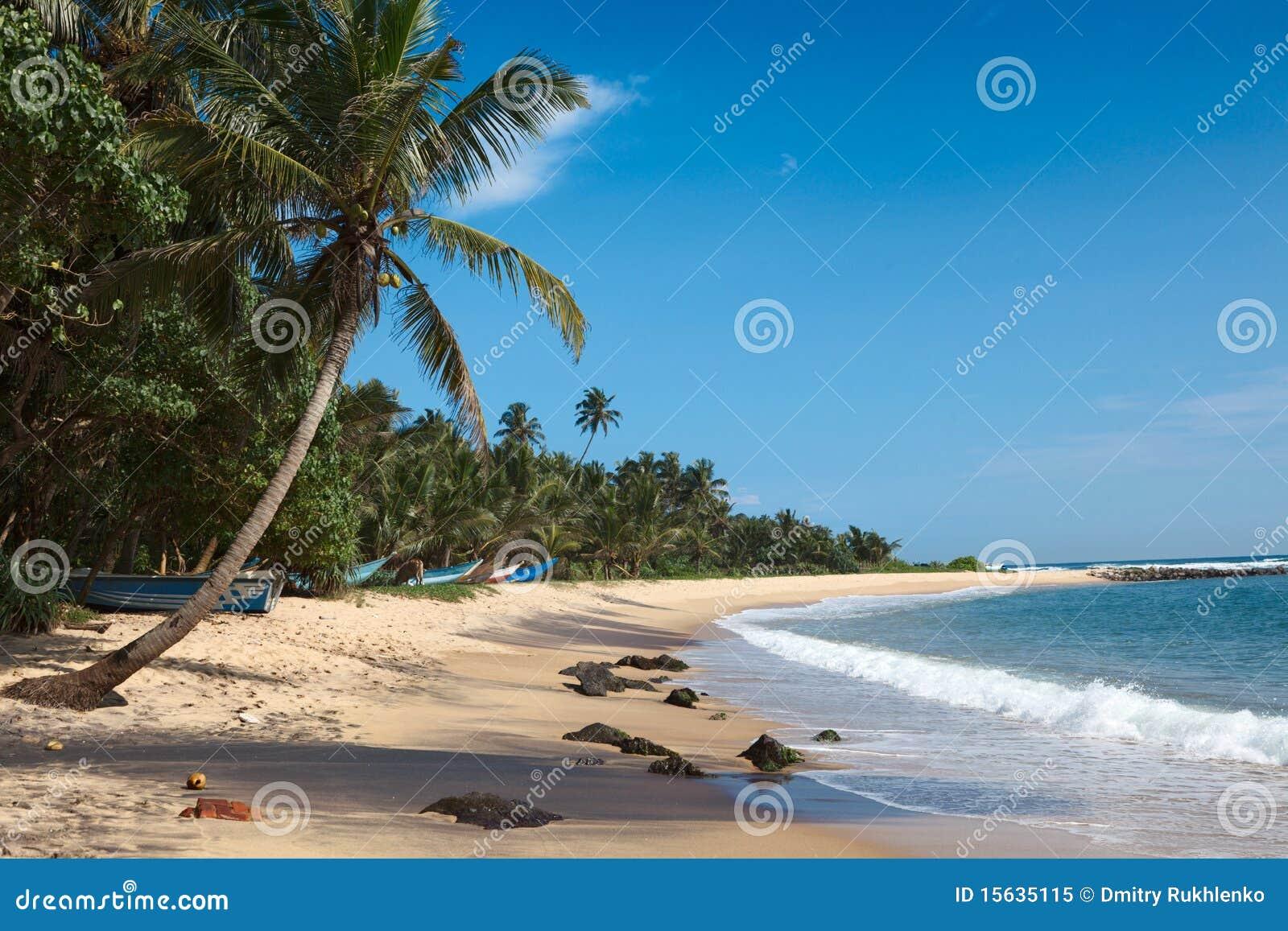 Lanka plażowy idylliczny sri