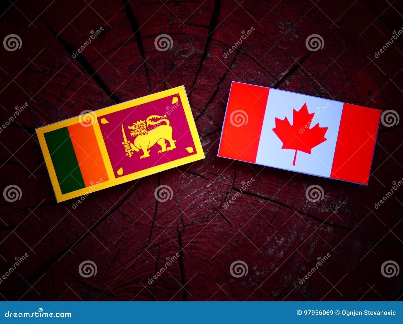 Lankijczyk flaga z kanadyjczyk flaga na drzewnym fiszorku odizolowywającym