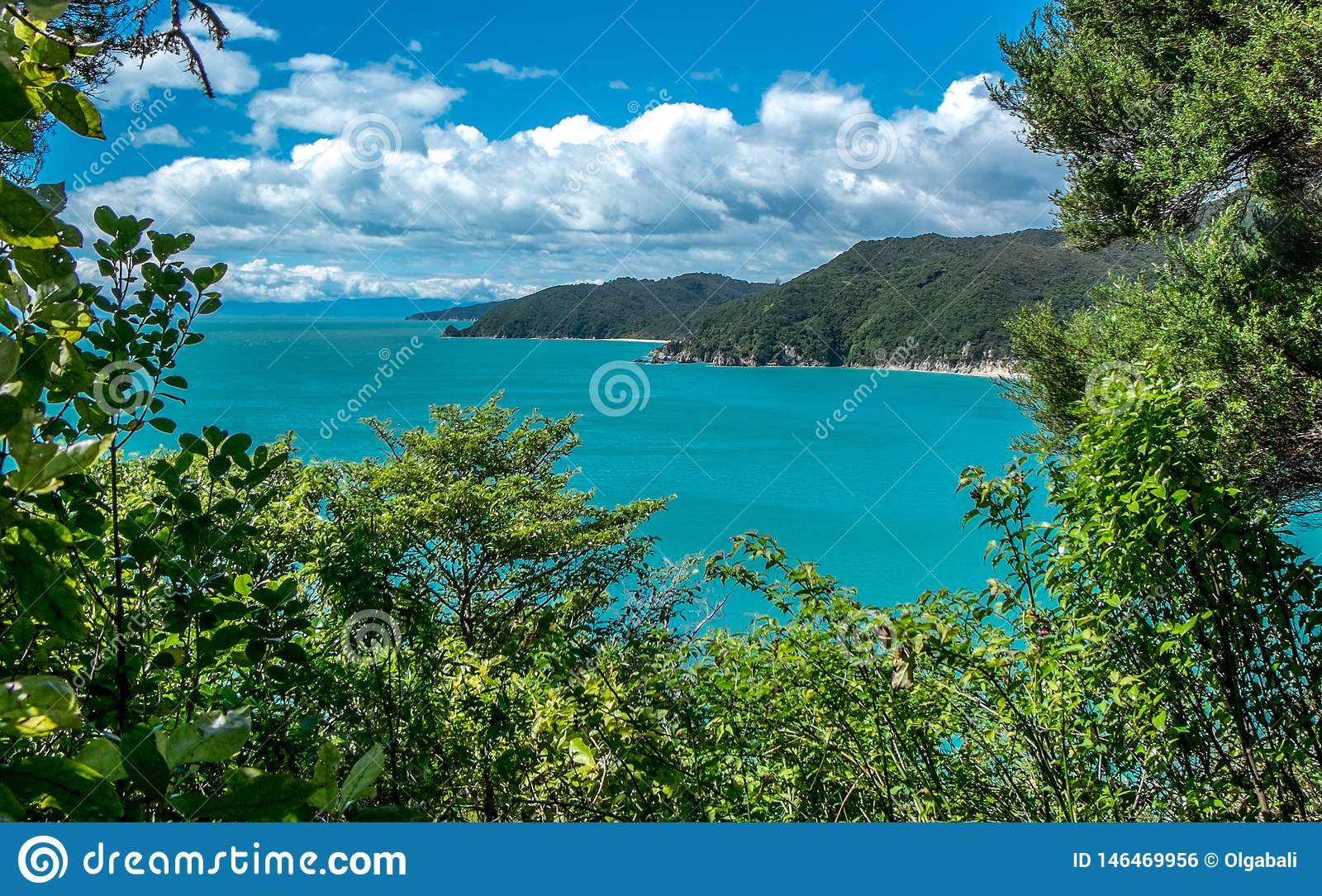 Lanscape z oceanem, górami i drzewami, Tasman zatoka, Nelson teren, Nowa Zelandia