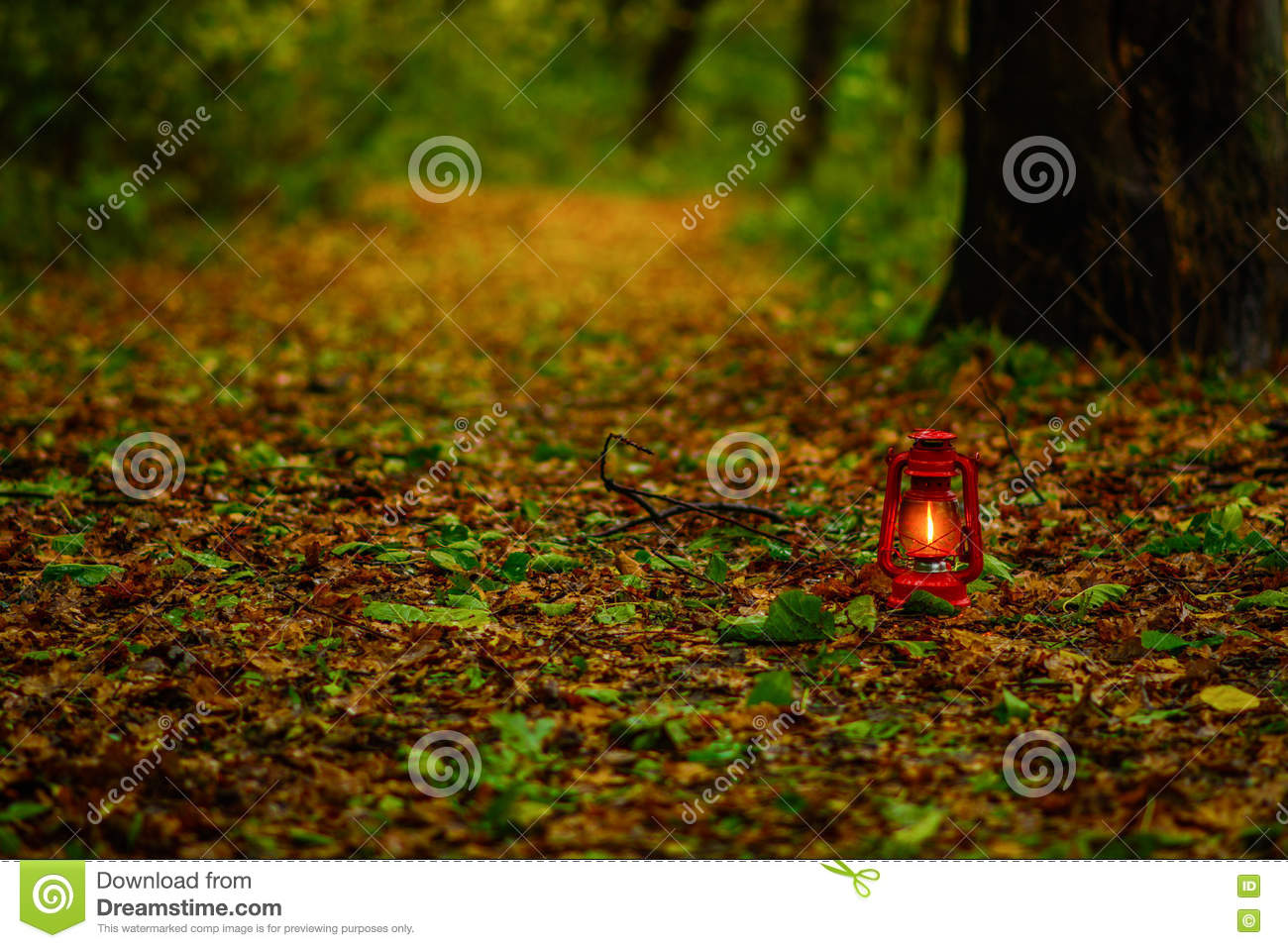 Lantern in the autumn leaves